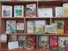 Путешествие в страну «Экология»: Квест-игра
